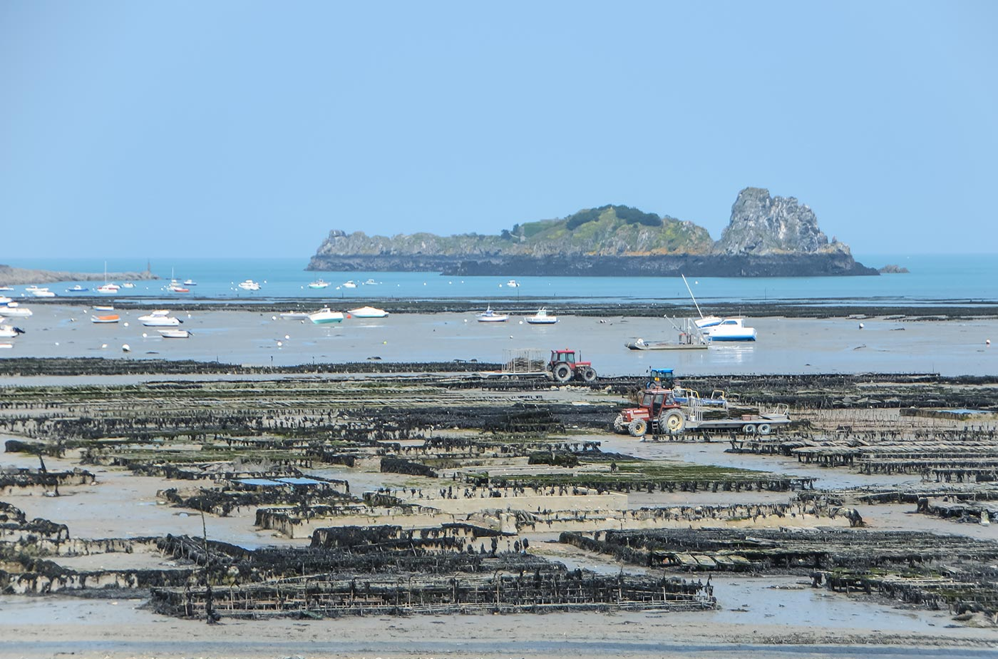 Cancale 4